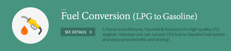 Fuel Type Conversion